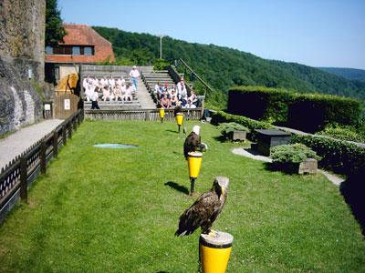 Vereinsausflug am 13.07.03 nach Bad Wimpfen und Burg Guttenberg