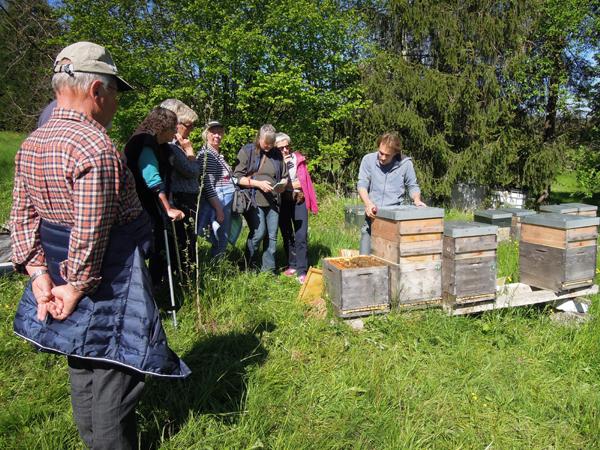 Besuch bei der Imkerei Goldblüte in Aichelberg