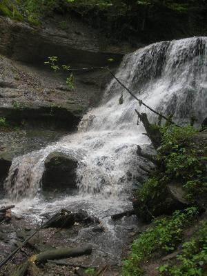Vereinsausflug am 5. Juni 2011 in den Schwäbischen Wald